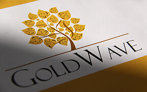 GoldWave. Logo Design. Stationery Development. Retail Booth Wrap-up Design.