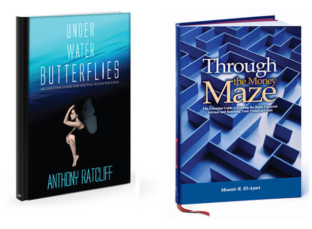 Under Water Butterflies Image of book cover. Through the Money Maze book cover sample.