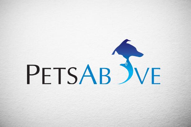brand identity development for pets above